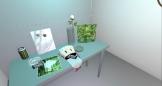 Second Life installation of Desktop